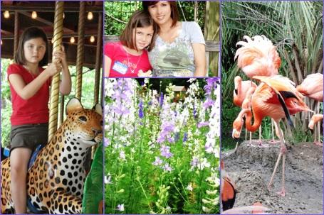 050709 Zoo